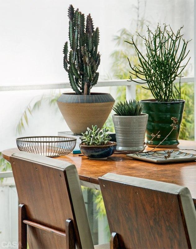 05-plantas-dentro-de-casa