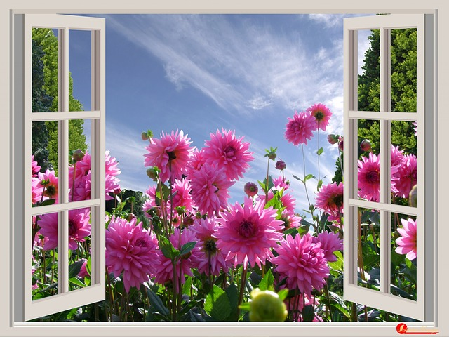 a-beautiful-day-174599_640