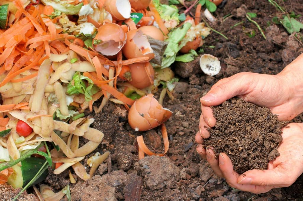 adubo caseiro (compostagem)