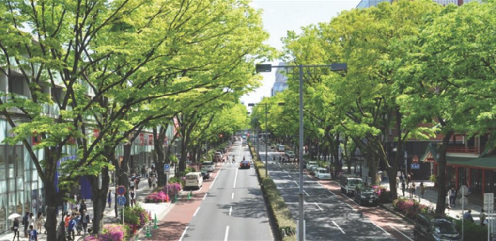 arborizacao-urbana-1