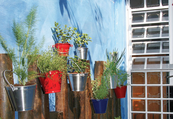 baldes para plantar