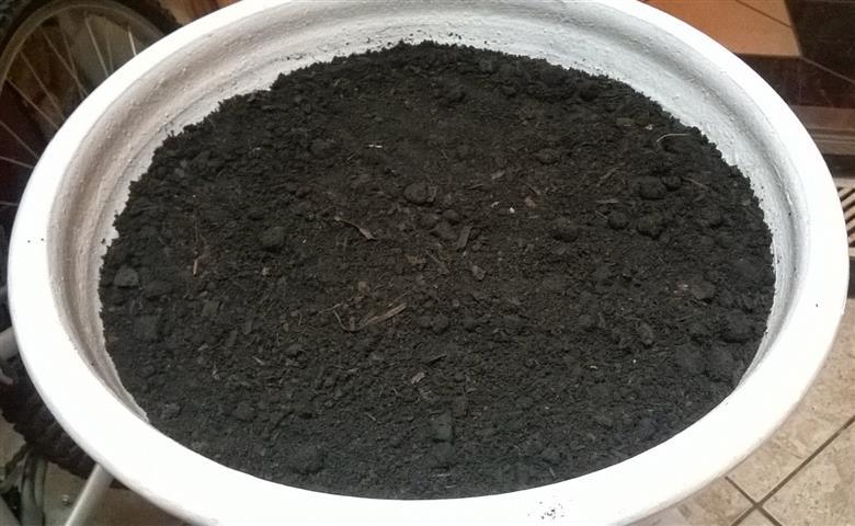 carvão moido