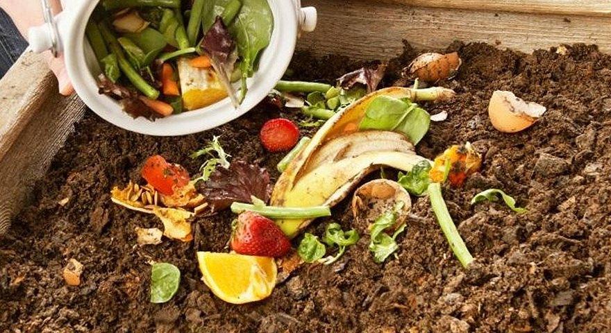 compostagem-doméstica