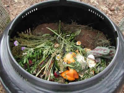 compostagem11