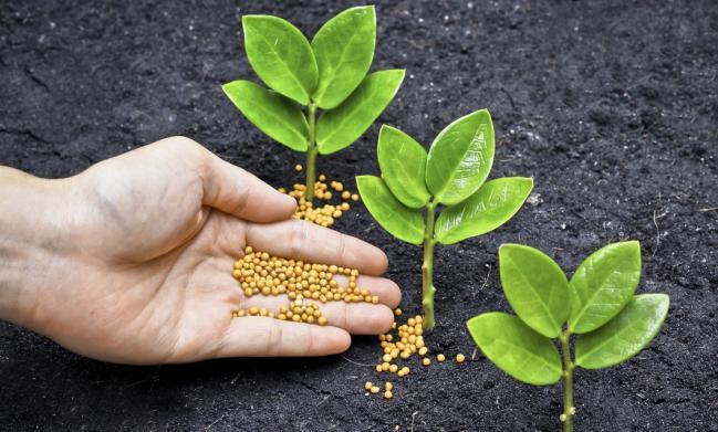 fertilizante_2