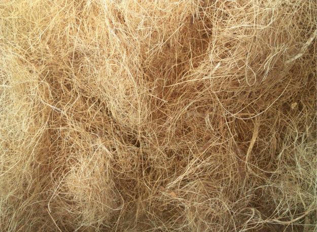 fibra-de-coco-2