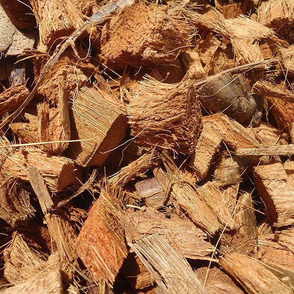 fibra-de-coco- chips