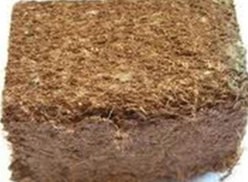 fibra-de-coco-prensada1