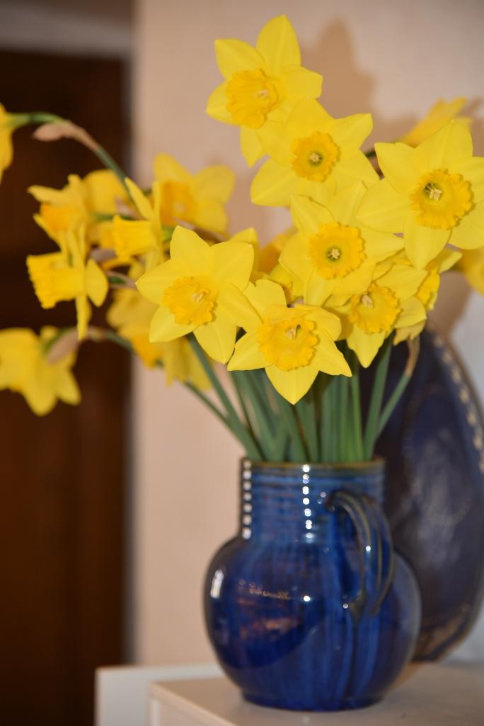 flores-de-corte