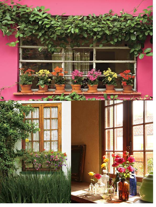 flores-janela