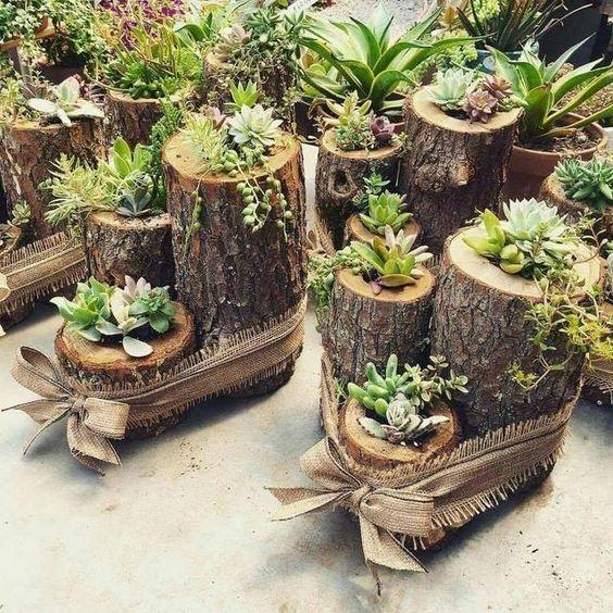 vasos de madeira