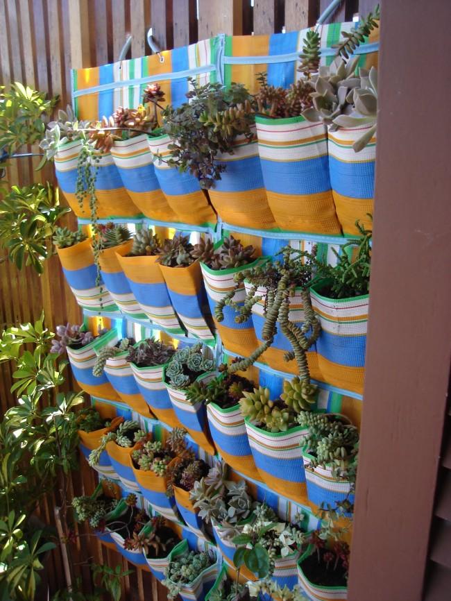 jardim +sapateira