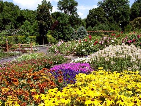 jardim-com-flores