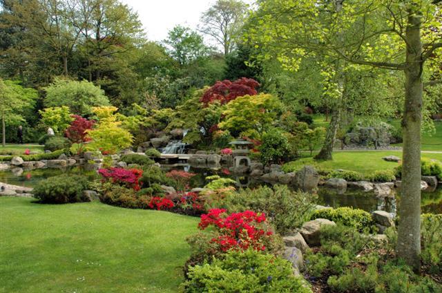 jardim dos sonhos (Small)