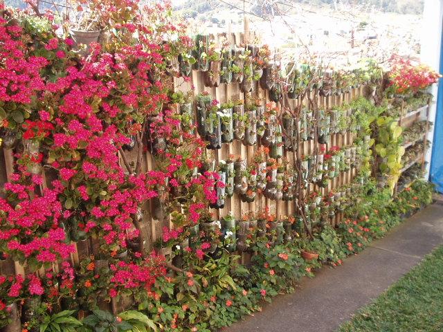 jardim emgarrafas