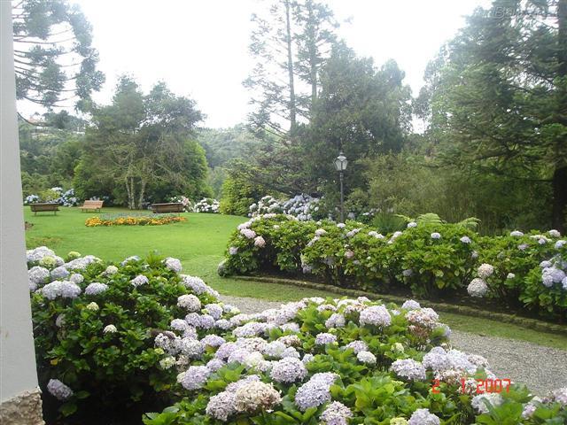 jardim florido (Small)