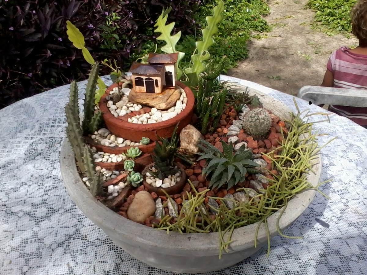 jardim miniatura