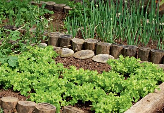jardim orgânico