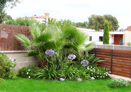 Jardins pequenos como fazer plantasonya o seu blog - Jardines con poco mantenimiento ...