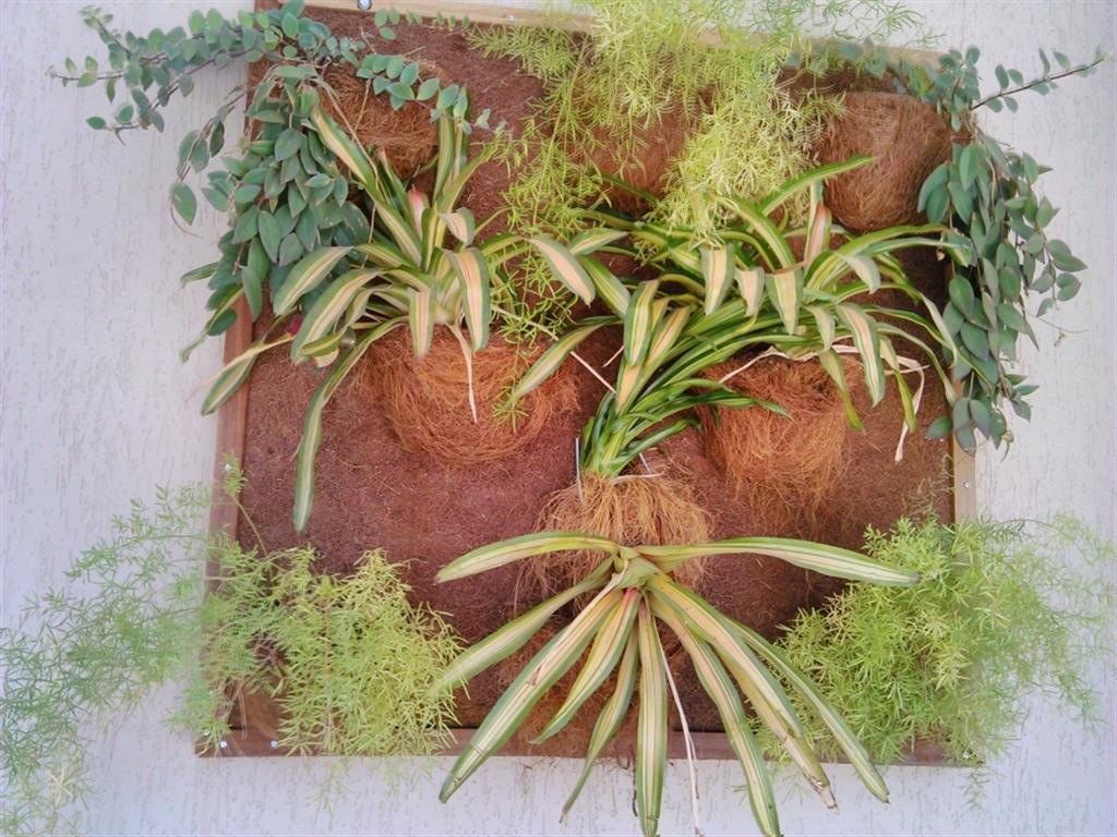 jardim-vertical-fibra-de-coco_62