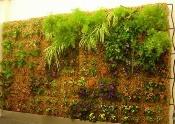 jardim-vertical-fibradecoco-6