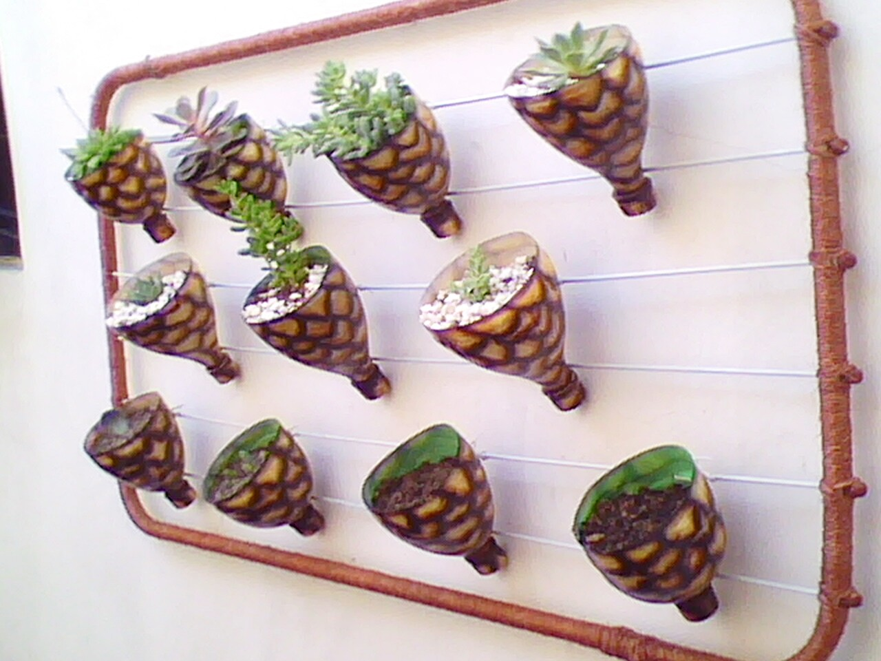 jardim-vertical garrafa pet