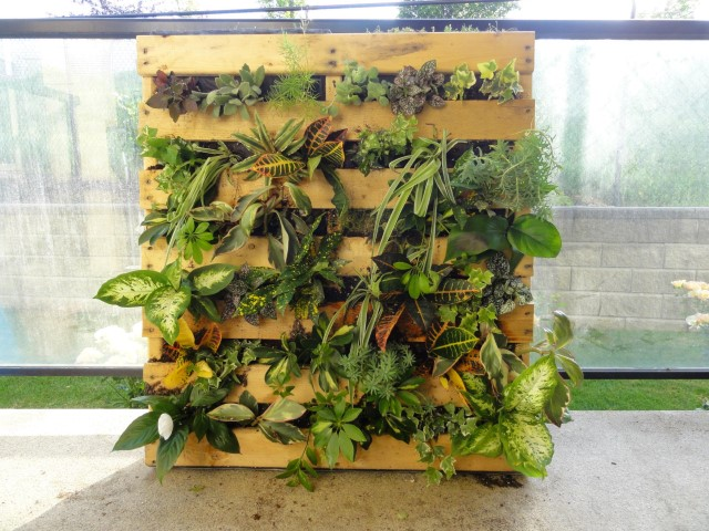 jardim vertical palets