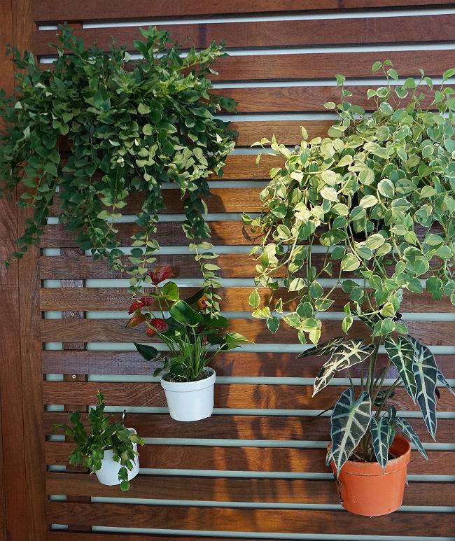 jardim-vertical01