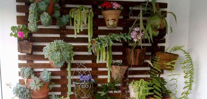 jardim vertical na cozinha:montá-lo na varanda, fachada, garagem, sala ou até mesmo na cozinha