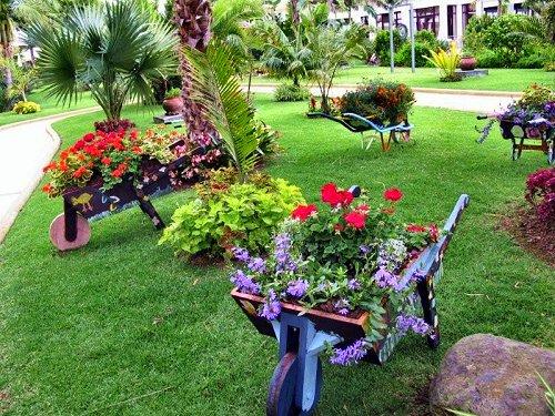Como manter um jardim sempre cuidado  PlantaSonya  O seu blog sobre