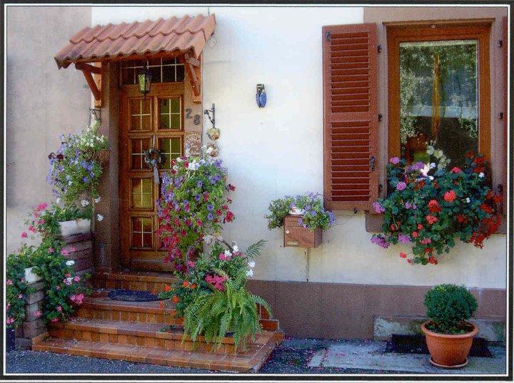 flores no jardim o ano todo Jardins – PlantaSonya – O seu blog