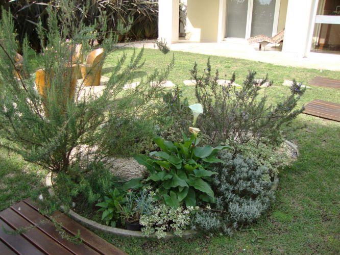 Dicas plantasonya o seu blog sobre cultivo de plantas e flores - Jardin de aromaticas ...
