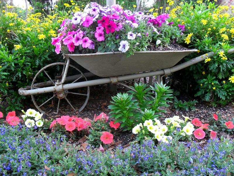 jardinagem11