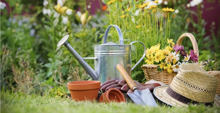 jardinagem_876