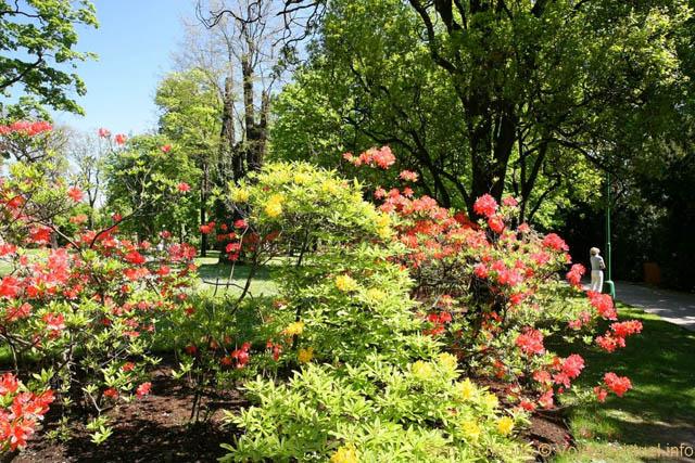 jardins (Small) (2)