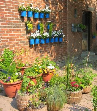 jardins-em-latas