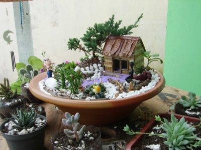 Grama jardim preço