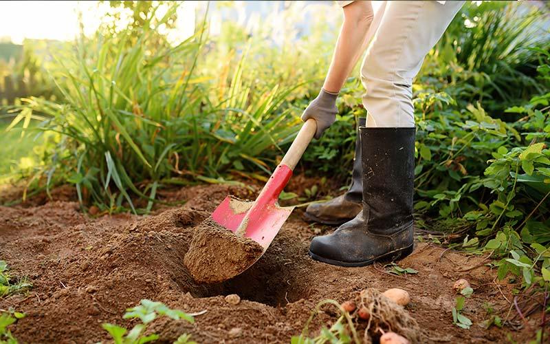 ferramenta-jardinagem