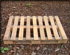 pallete de madeira