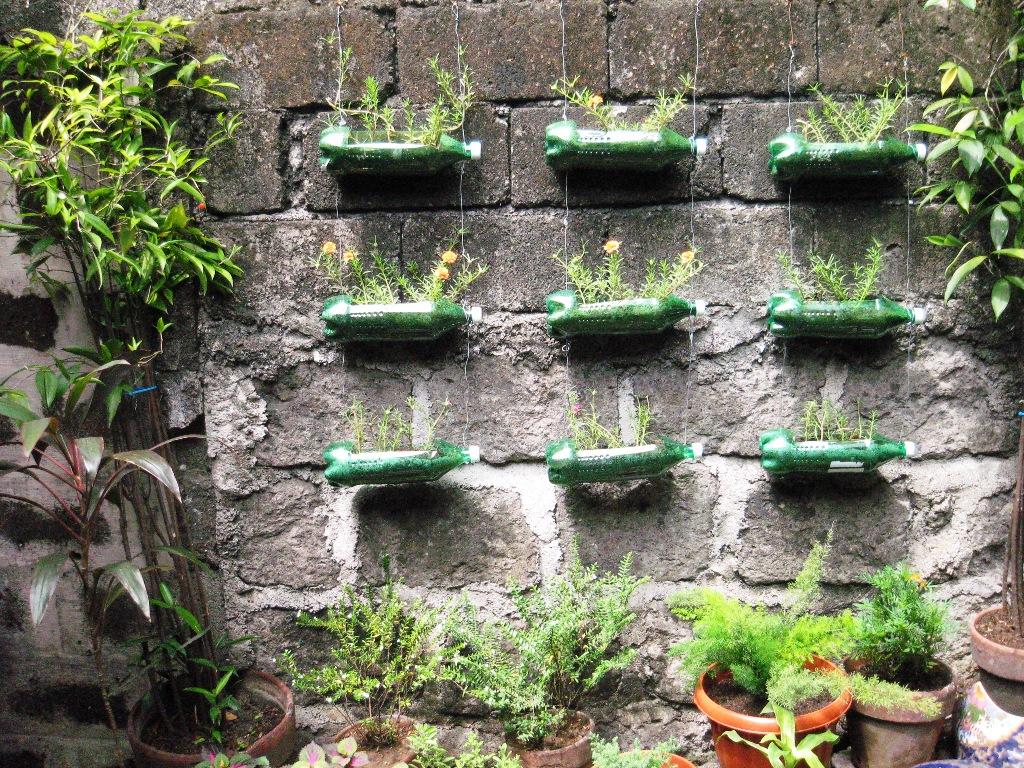 Dicas de como plantar em garrafa pet plantasonya o seu for Jardines pequenos horizontales