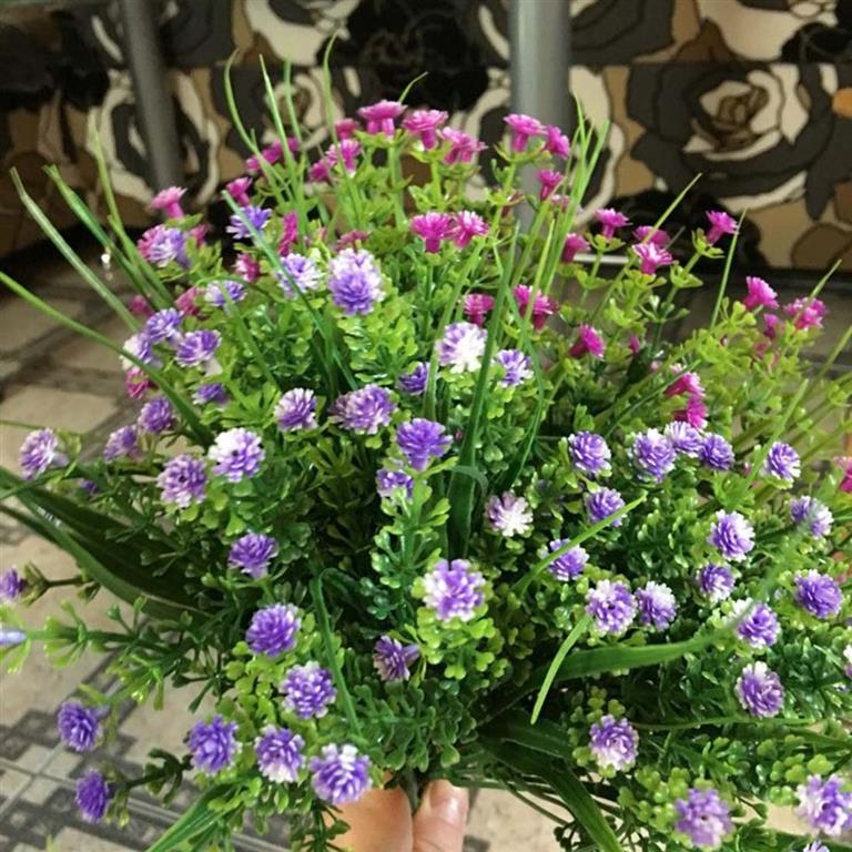 planta herbácea