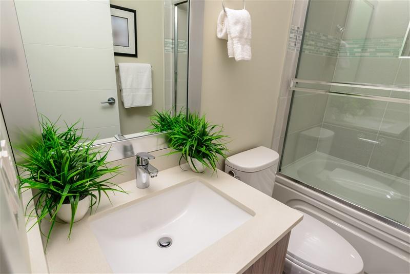 plantas-banheiro
