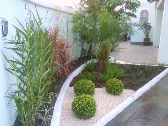 plantas-e-jardins6
