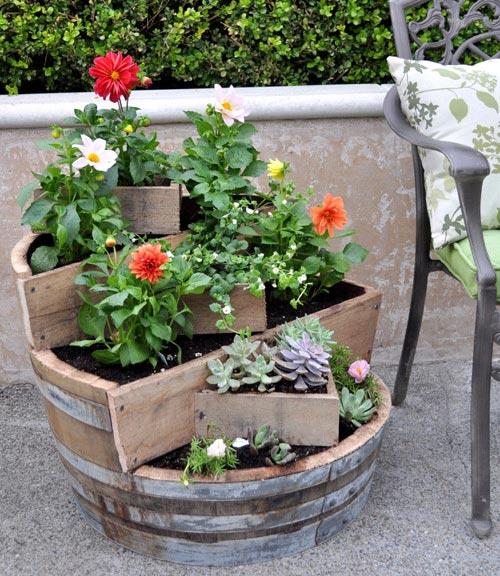 plantas-vasos