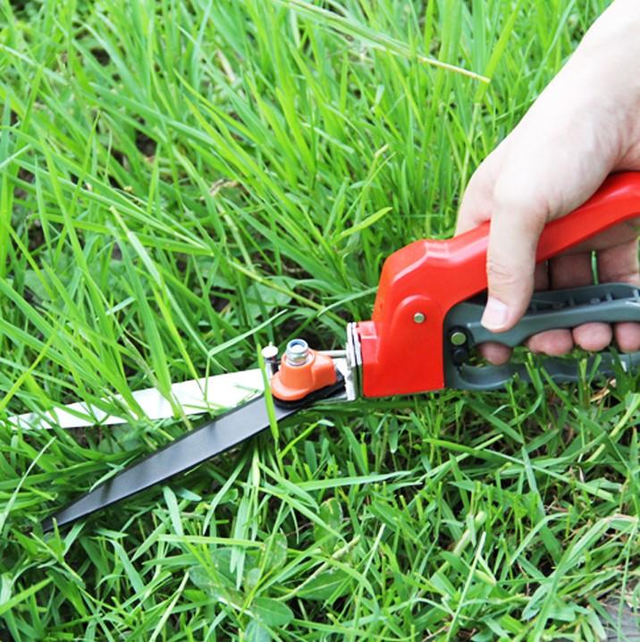 poda gramado