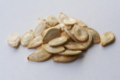 sementes2