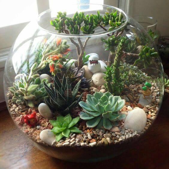 terrario-em-vaso-de-vidro