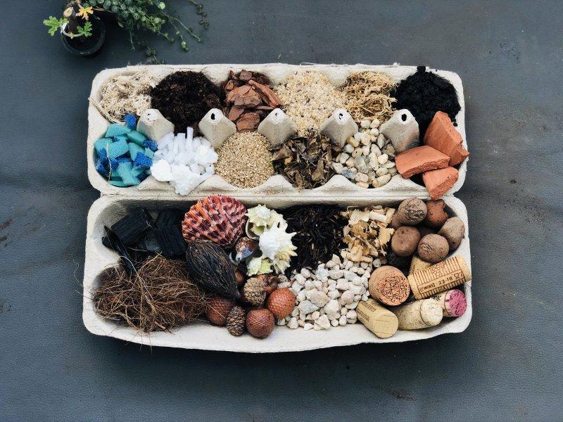 substrato-para-plantas