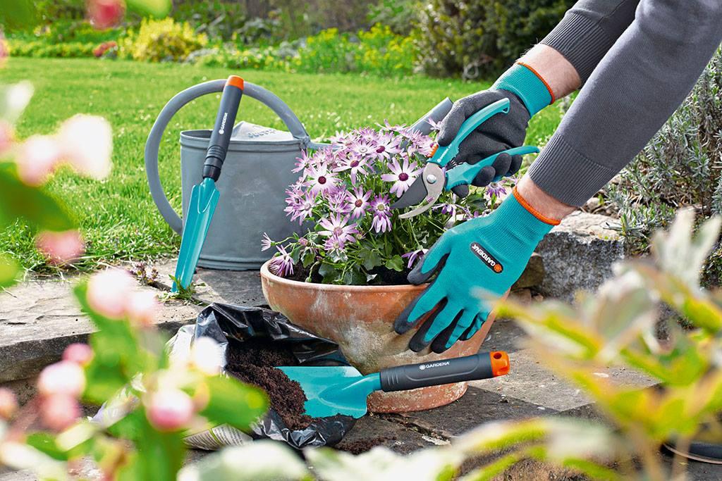 utensílios-jardinagem