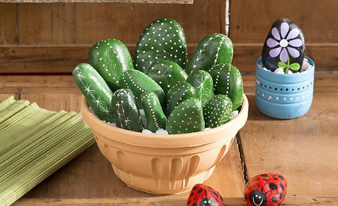 vaso-cactus